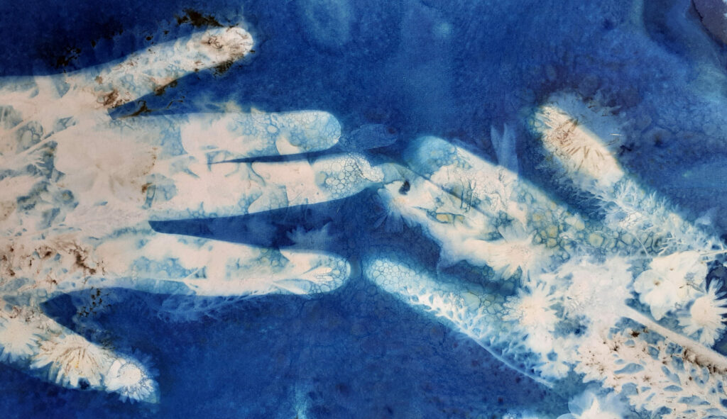 Stamford Connection cyanotype hands print
